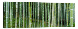 Canvas print  Green bamboo forest in Kyoto, Japan - Jan Christopher Becke