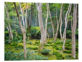 Foam board print  Gio-ji Temple in Arashiyama, Japan - Jan Christopher Becke
