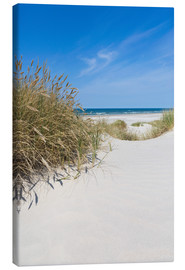 Canvas print  Dunes and the Sea