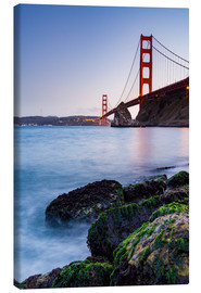 Canvas print  Moss-covered rocks at the Golden Gate
