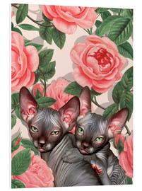 Foam board print  Sphynx kitten with roses - Mandy Reinmuth