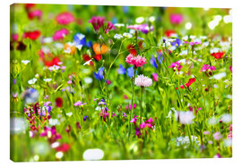 Canvas print  Flower meadow - fotoping
