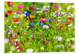 Foam board print  Flower meadow - fotoping