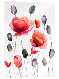 Acrylic print  Poppy flowers and capsules