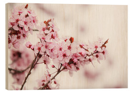 Wood print  Cherry blossoms