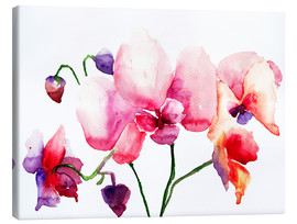Canvas print  Pink orchids