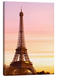 Canvas print  Beautiful Light in Paris - Mike Clegg Photography