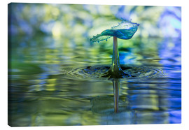 Canvas print  Water drops with bokeh - Stephan Geist