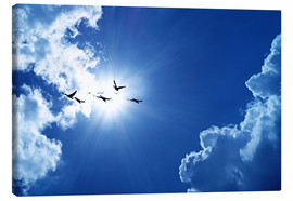 Canvas print  Birds infront of the sun