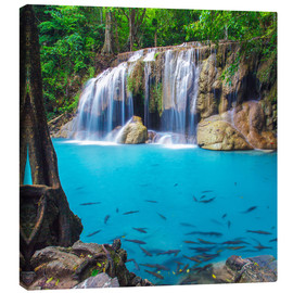 Canvas print  Fish in front of waterfall