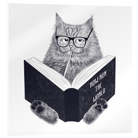 Acrylic print  Reading cat - Valeriya Korenkova