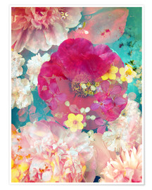 Premium poster  Colorful flowers in the water - Alaya Gadeh