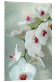 Acrylic print  Composition of a white orchid with transparent texture - Alaya Gadeh