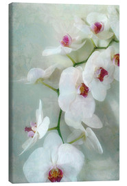Canvas print  Composition of a white orchid with transparent texture - Alaya Gadeh
