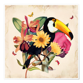 Premium poster  Oh My Parrot XII - Mandy Reinmuth