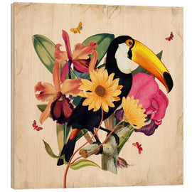 Wood print  Oh My Parrot XII - Mandy Reinmuth