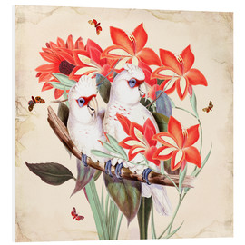 Foam board print  Oh My Parrot XI - Mandy Reinmuth