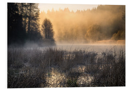 Foam board print  Foggy morning on the lake - Christian Möhrle