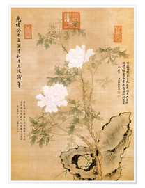 Premium poster  Peonies and Rock - Chinese School