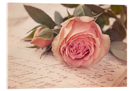 Acrylic print  Rose on the old letter - Elena Schweitzer