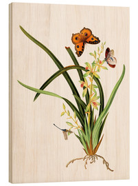 Wood print  Butterflies and a dragonfly on a plant