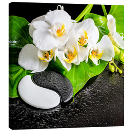 Canvas print  Spa arrangement with white orchid
