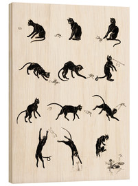 Wood print  The cat and the frog - Théophile-Alexandre Steinlen