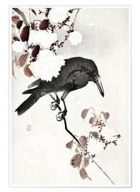 Premium poster  Crow and Cherry Blossoms - Ohara Koson