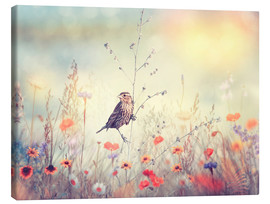 Canvas print  Field with wild flowers