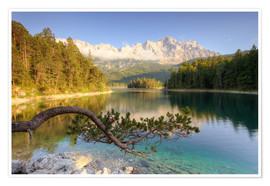 Premium poster At the Eibsee in Bavaria