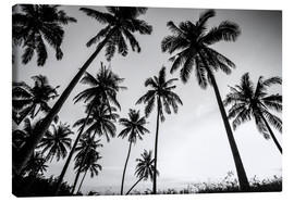 Canvas print  Silhouettes of palm trees