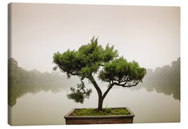 Canvas print  Japanese bonsai in zen garden