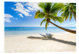 Acrylic print  Palm beach and sea in summer vacation - Jan Christopher Becke