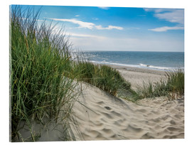Acrylic print  Summery dune landscape in Holland - Susanne Herppich