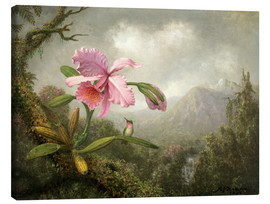 Canvas print  Orchid and Hummingbird - Martin Johnson Heade