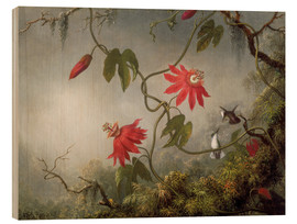 Wood print  Hummingbird on a Passionflower - Martin Johnson Heade