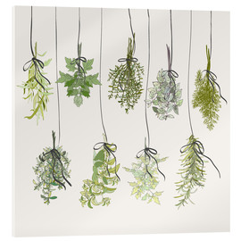 Acrylic print  Herb bouquets