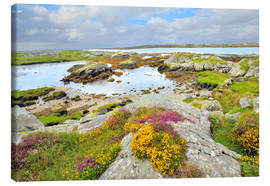 Canvas print  Ireland Landscape with wild flowers