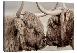 Canvas print  Two Scottish Highland Cattle