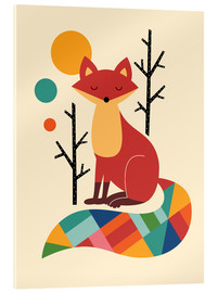 Acrylic print  Rainbow Fox - Andy Westface
