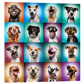 Acrylic print  More funny dog faces - Manuela Kulpa