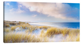 Canvas print  Dunes and the Ocean - Sascha Kilmer