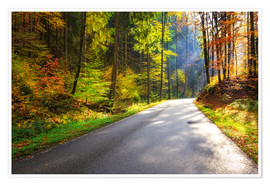 Premium poster Road through autumn forest