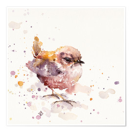 Premium poster  Fluffy Le Wren (cute bird) - Sillier Than Sally