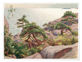 Premium poster Landscape with pine trees