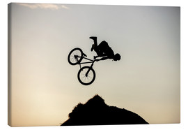 Canvas print  Extreme Cyclist