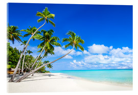 Acrylic print  White beach and palm trees in the tropics - Jan Christopher Becke