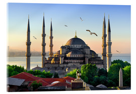 Acrylic print  The blue mosque in Istanbul