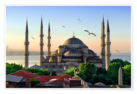 Premium poster  The blue mosque in Istanbul