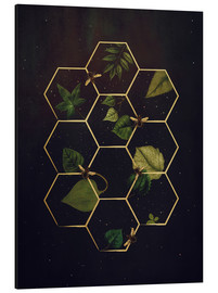Aluminium print  bees in space - Sybille Sterk